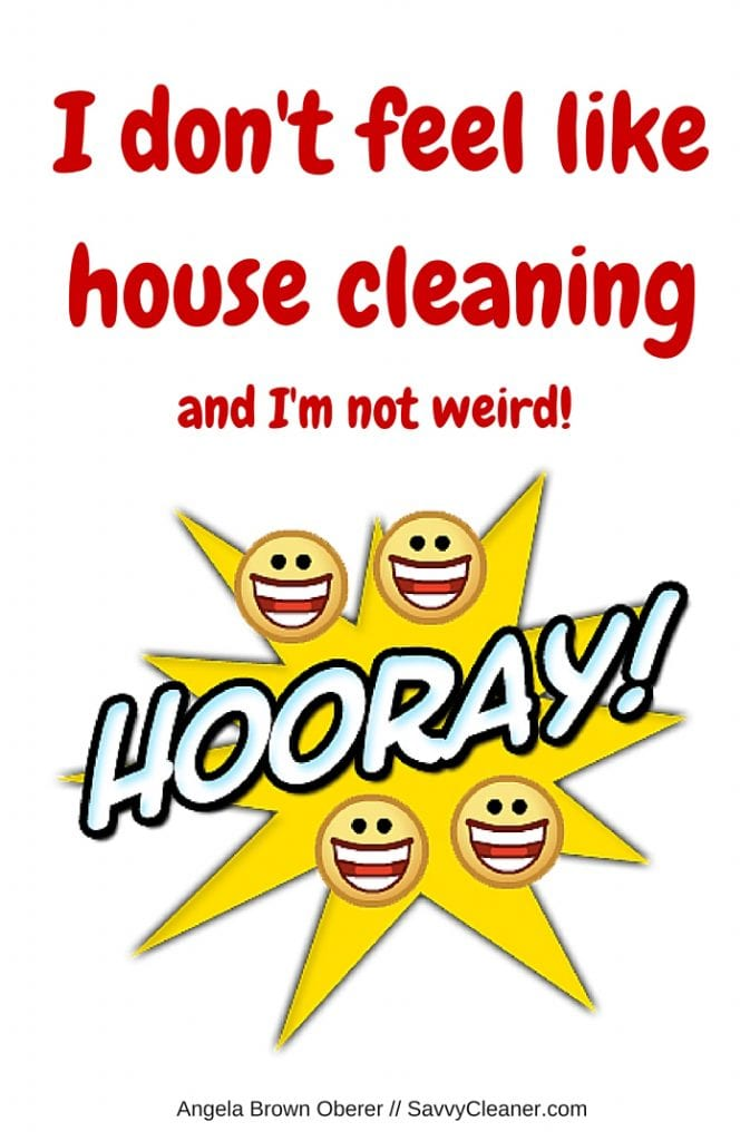 Strange House Cleaning Not Today Savvycleaner Ask A House Cleaner Download Free Architecture Designs Terchretrmadebymaigaardcom