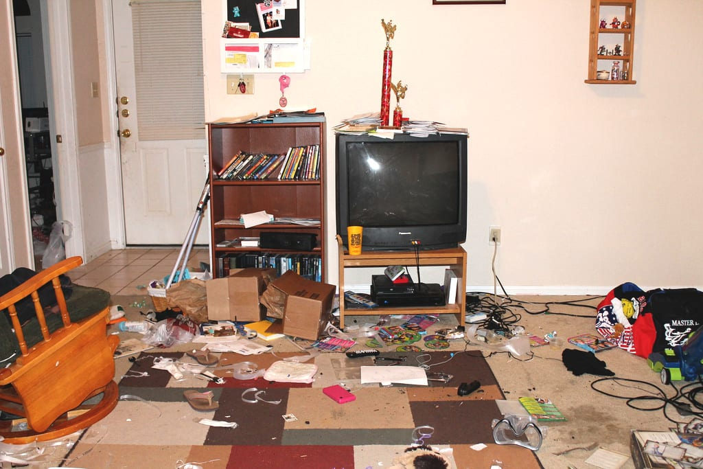 house cleaning emergency trashed living room