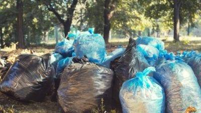 Yardwork, upselling leaf raking and bagging service