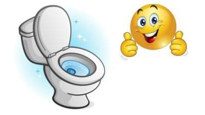 using the bathroom. customers bathroom  clean toilet Customers Bathroom Can I Use it Ask a House Cleaner