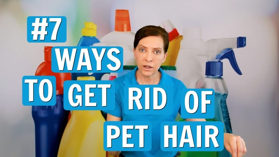 Ask a House Cleaner, Pet Hair Removal, Savvy Cleaner