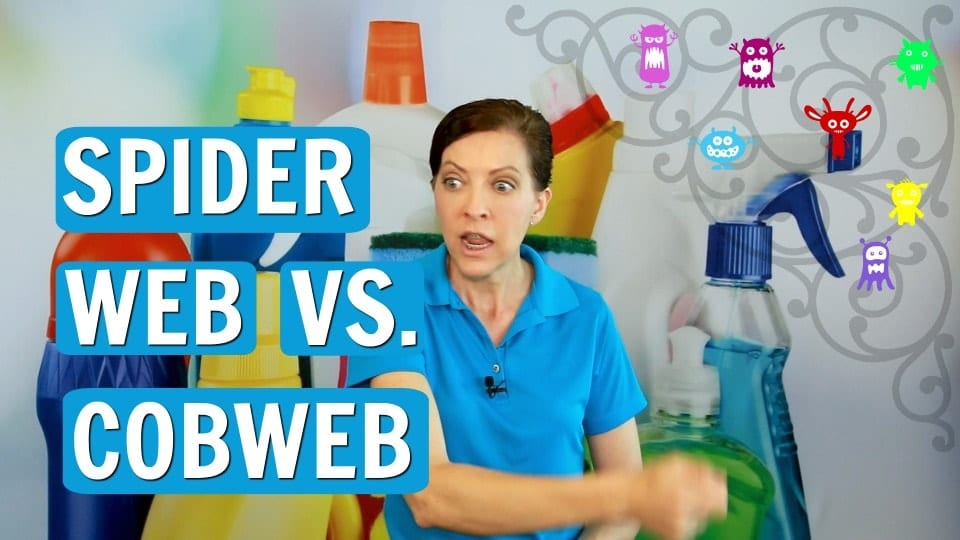 Ask a House Cleaner, Spiderweb vs. Cobweb, Savvy Cleaner
