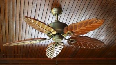 Basic Clean ceiling fan