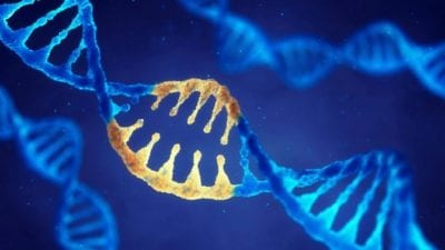 Cleaning Gene double helix dna