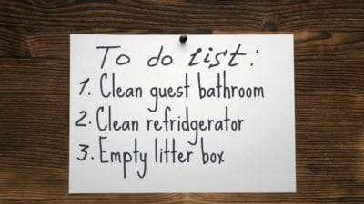Chatty Cathy, To Do List