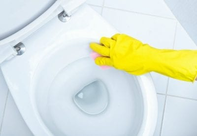 Pumice Stones, Cleaning Toilet with Pink Pumice