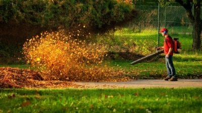 Backpack Vacuums, Man With Leaf Blower Blowing Large Pile of Leaves