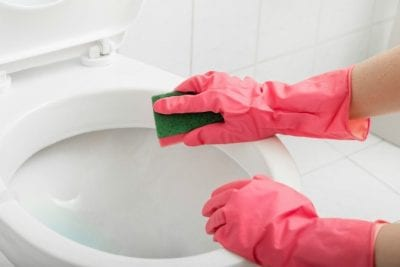 Sponges, Cleaning Toilet With Sponge
