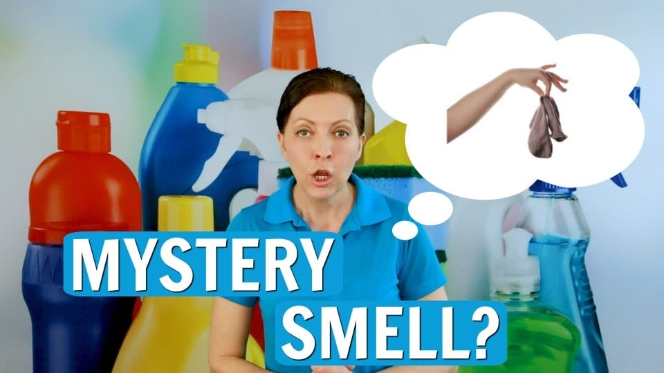 Ask a House Cleaner, Mystery Smell, Savvy Cleaner