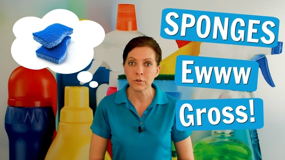 Ask a House Cleaner, Sponges, Savvy Cleaner