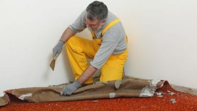 Clean or Paint First man ripping up old carpet