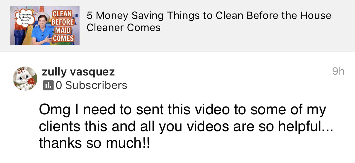 Videos are so helpful, Ask a House Cleaner Testimonial