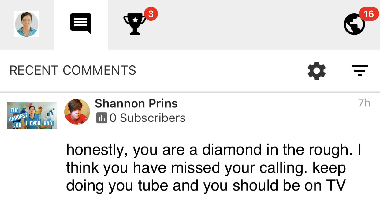 Diamond in the rough, Ask a House Cleaner Testimonial
