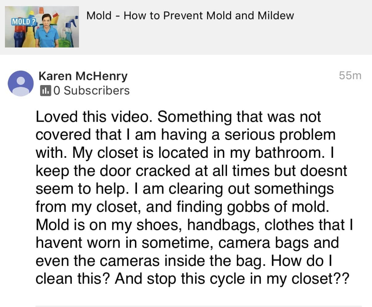 Loved this video, Ask a House Cleaner Testimonial