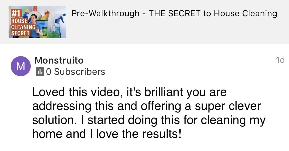 Loved this video_5, Ask a House Cleaner Testimonial