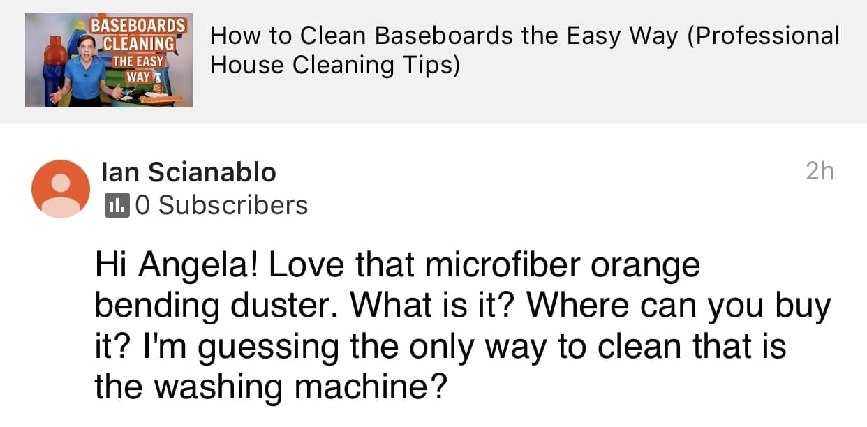 Loved that, Ask a House Cleaner Testimonial