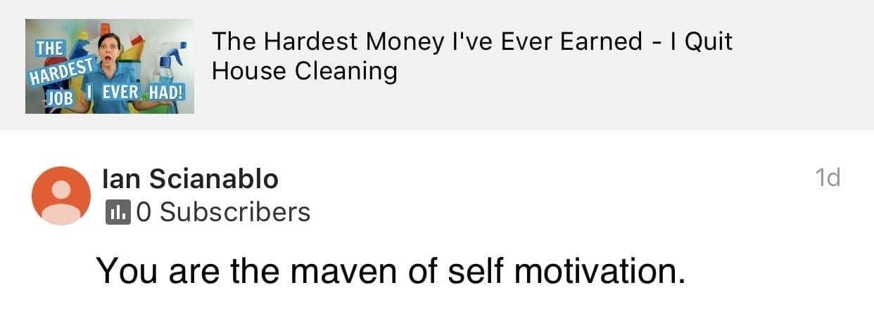 The maven, Ask a House Cleaner Testimonial