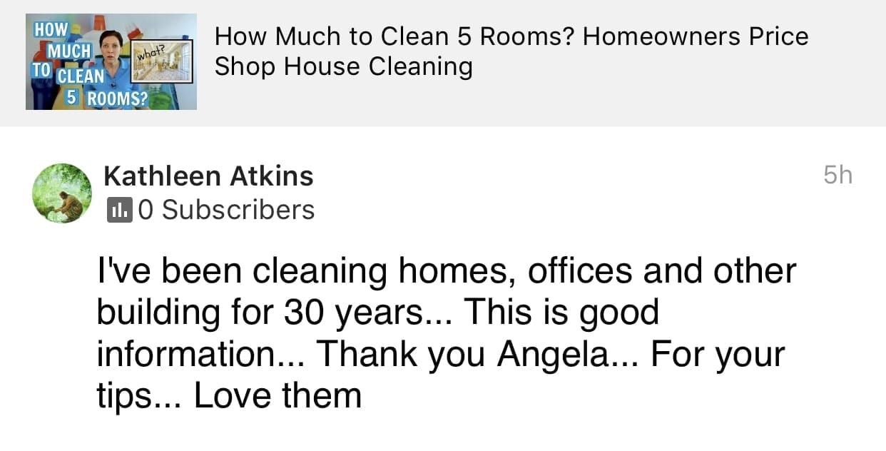 This is good information., Ask a House Cleaner Testimonial
