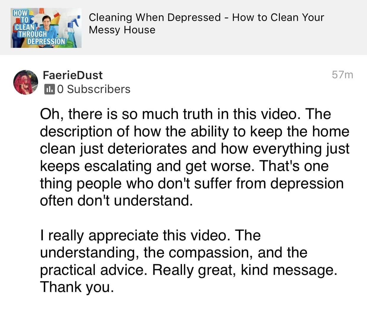 Truth in this video, Ask a House Cleaner Testimonial