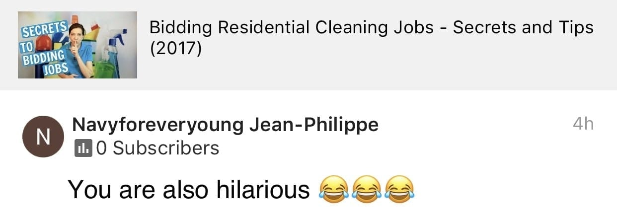You are also hilarious, Ask a House Cleaner Testimonial