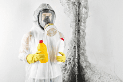 How to Charge for a Hoarding Job, Mold Removal Specialist