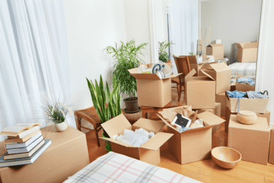 Interrupted While Cleaning, Boxes and Clutter In Home