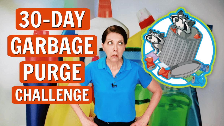 The Garbage Purge, Angela Brown, Savvy Cleaner