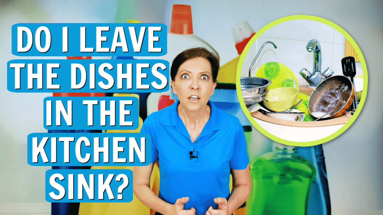 Dishes In the Kitchen Sink, Angela Brown, Savvy Cleaner