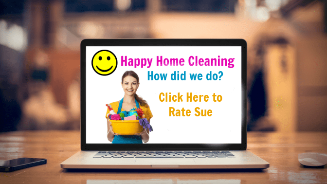 Becoming a Boss, Website Happy Home Cleaning Rate Sue