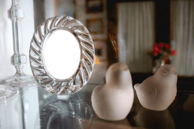 House Cleaner Breaks Client's Stuff, Bird Figurines
