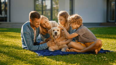 Good Cleaning At A Cheap Price, Family and Dog