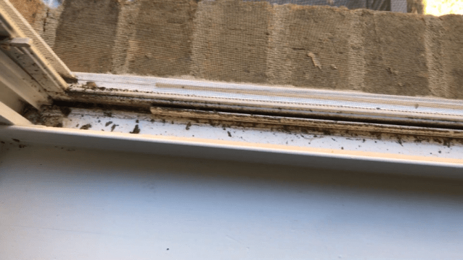 Move Out Cleans Only, Dirty Window Track